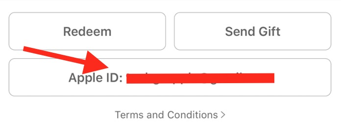 Apple ID on iPHone