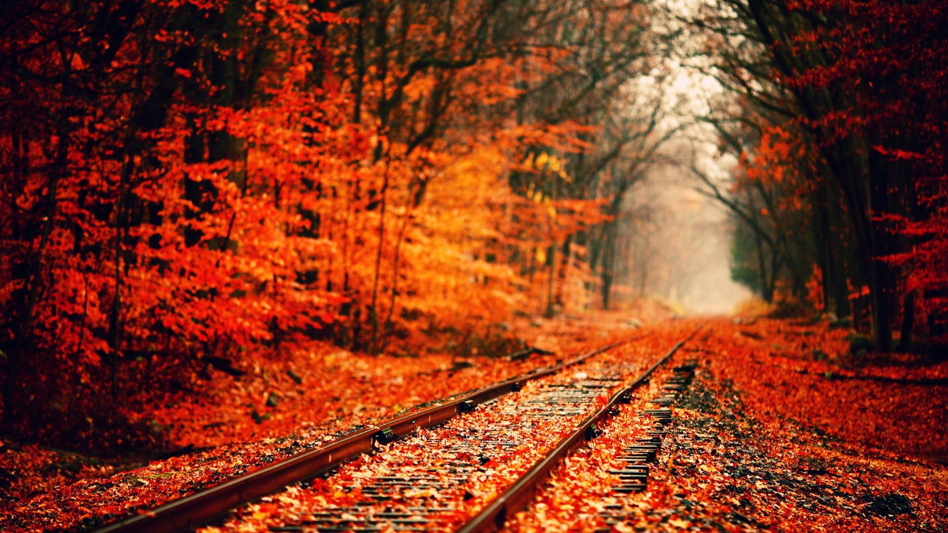 autumn-wallpapers-1