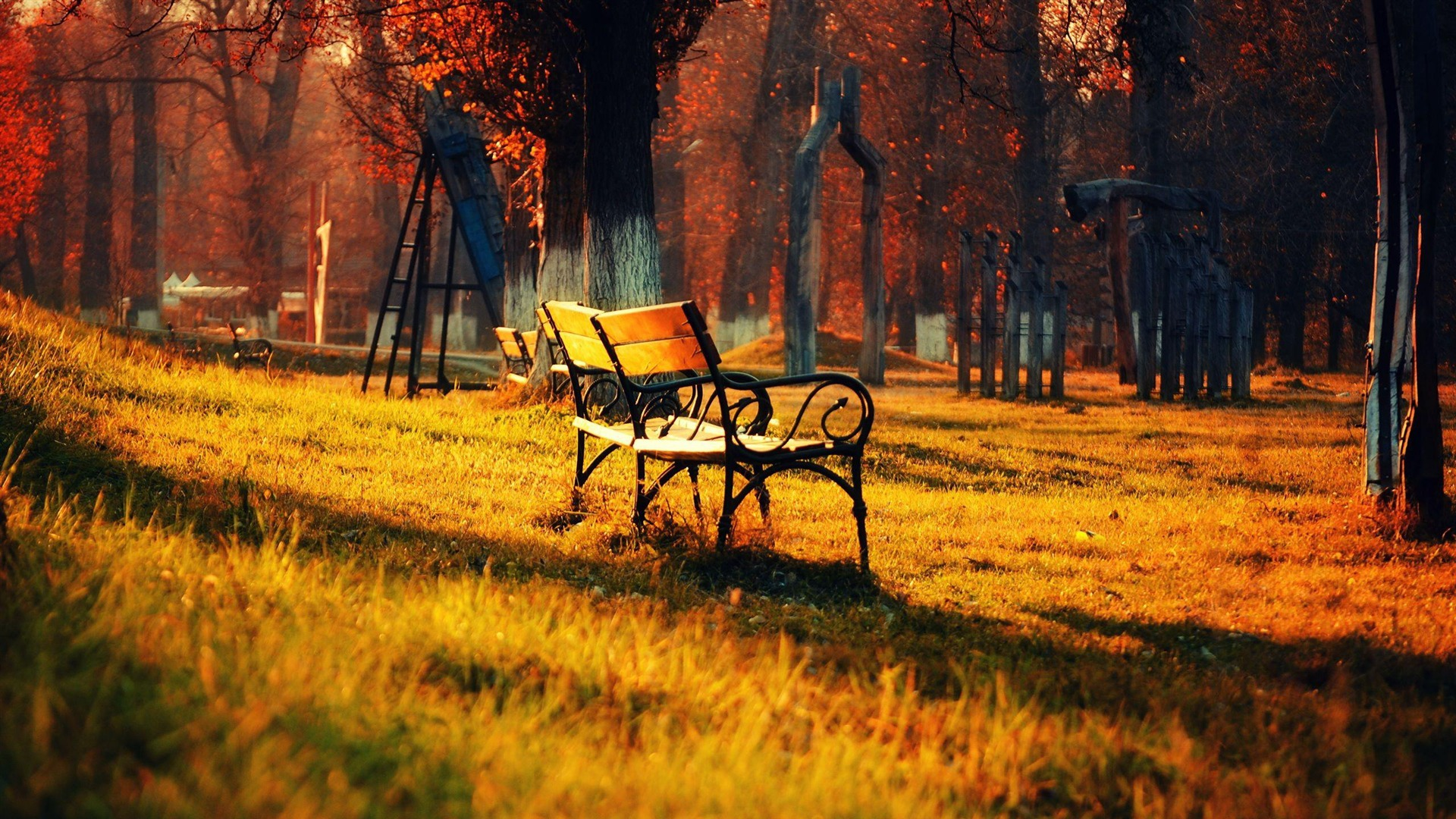 fall-wallpapers-lonely-seat